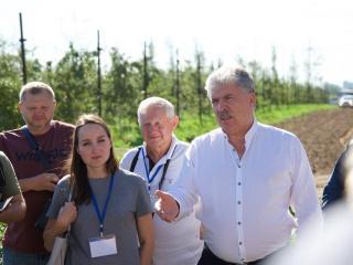 FruitNews: Более 160 производителей посетили практические семинары Ягодного союза - FruitNews.RU