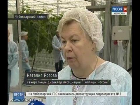 FruitNews: FruitNews.RU | Тепличники назвали сложности финансирования и высокую стоимость энергии основной причиной недостаточной конкурентоспособности российских овощей