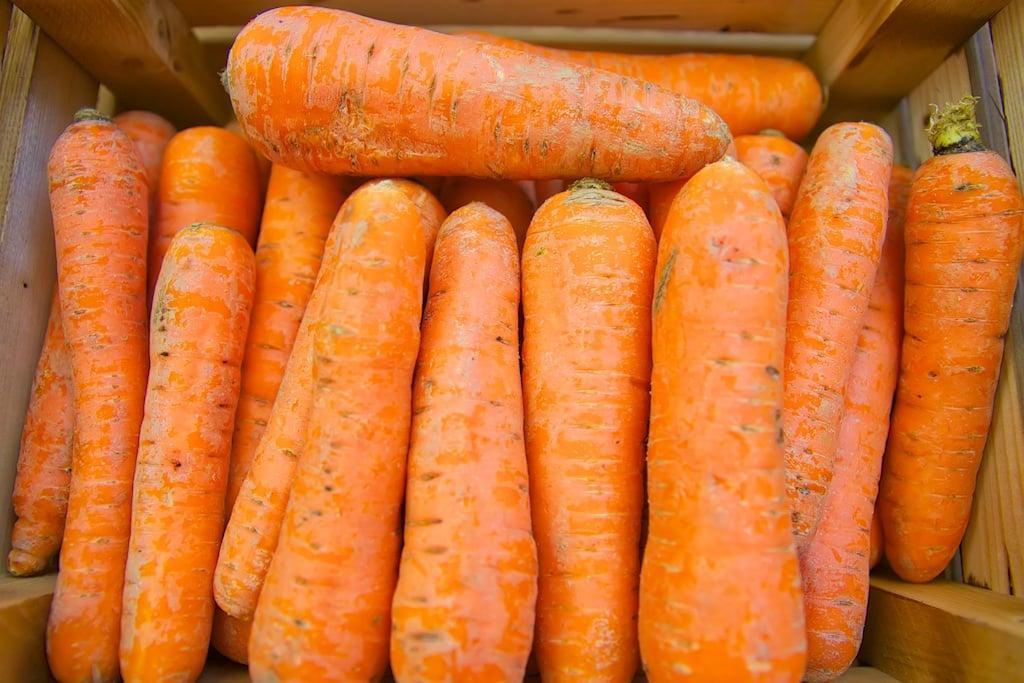 Морковь. Фото FruitNews.RU