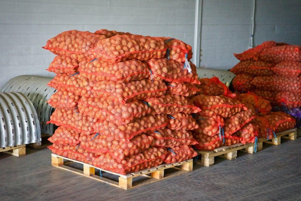фото складов для овощей ведь прекрасна, когда