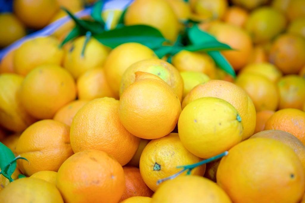 Картинки по запросу Новые сорта цитрусовых и яблок появятся в Чили