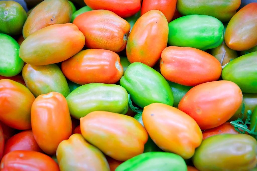Более 460 тыс. тонн тепличных овощей собрали с начала года в России