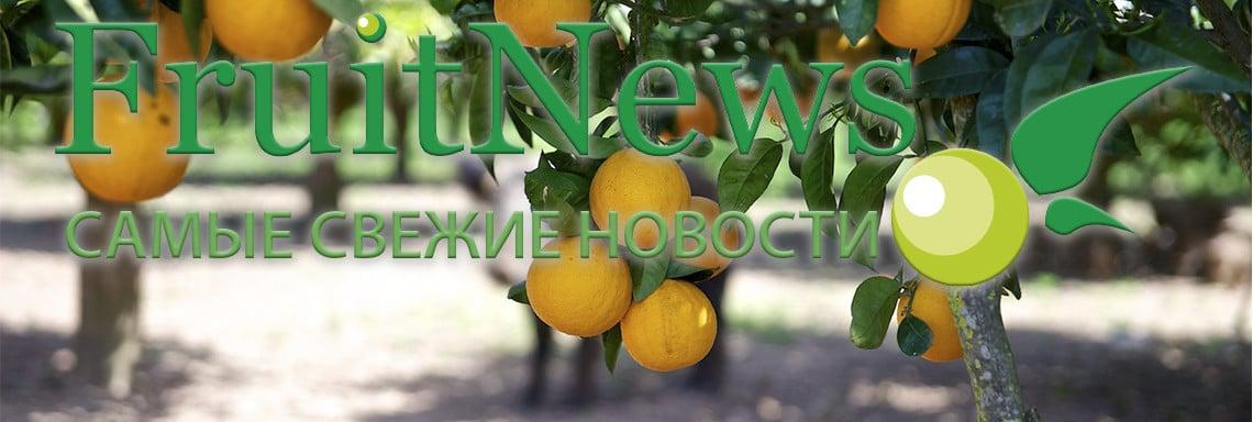 FruitNews: About us - FruitNews.RU