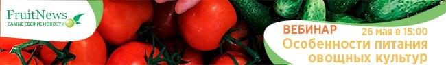 Вебинар «Особенности питания овощных культур»