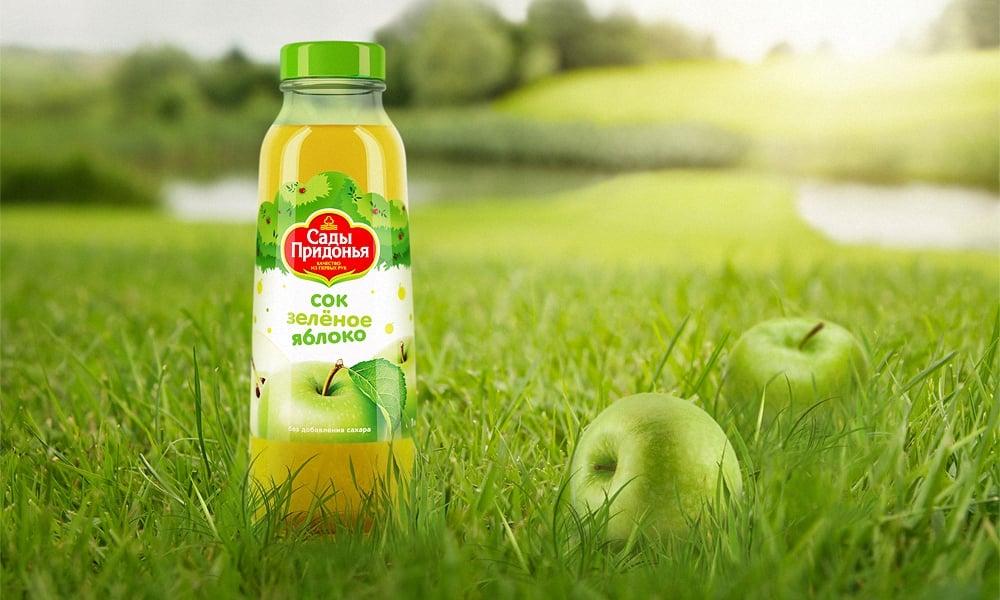 Фото садов яблочных
