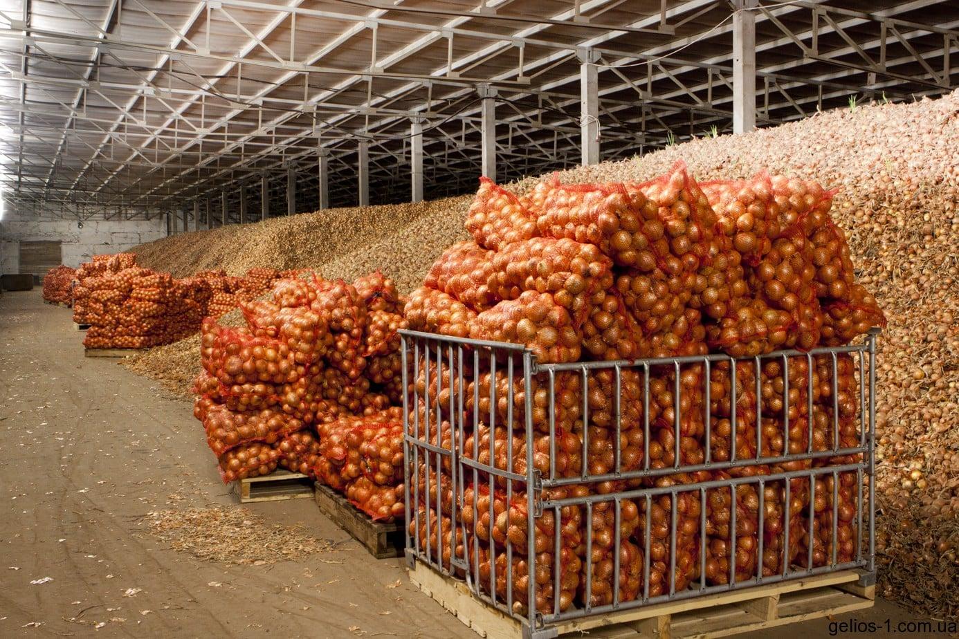Картофелехранилище своими руками на 100 тонн