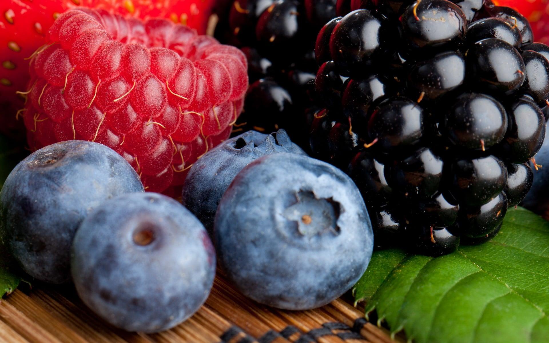 Лесные ягоды  № 2169666 загрузить